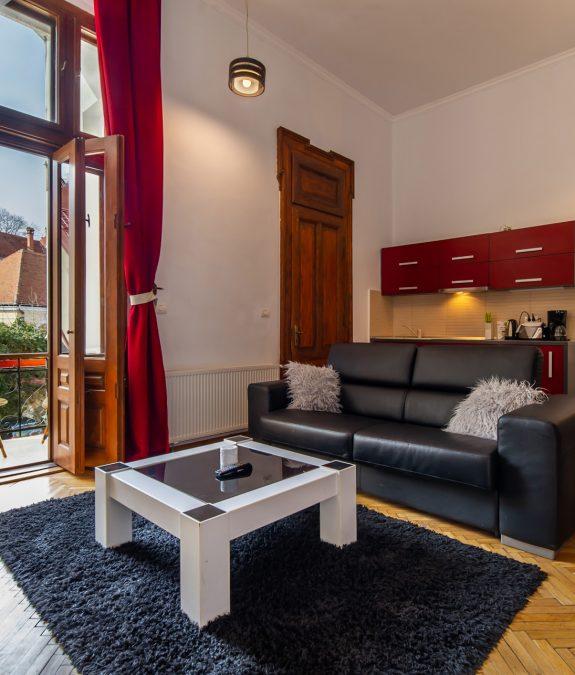 poza-secundara-apartament-cheminee